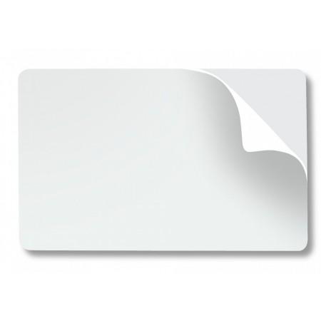 Karty Zebra 104523-010